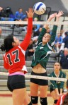 Sacred Heart's Nicolette Paci couldn't save the Lions from falling in the District One Class A volleyball final.  PHOTO COURTESY OF MARK C. PSORAS