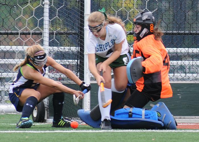 Agnes Irwin's Sophia Tornetta, left, was one of 14 Delco girls to be picked for first team All-Inter-Ac honors. PHOTO COURTESY OF PETE BANNAN