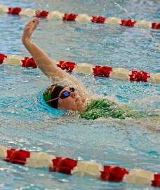 Ridley's Gab Rudy, swimming the 200 IM against Radnor last Saturday, is ranked near the top of several events. (Times Staff/TOM KELLY IV)